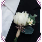 protea gents groom wedding silk flower button